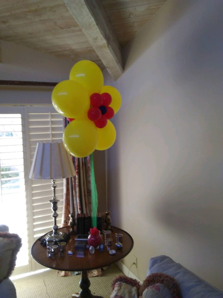 balloons-phoenix-098